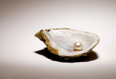 Perle in Muschel