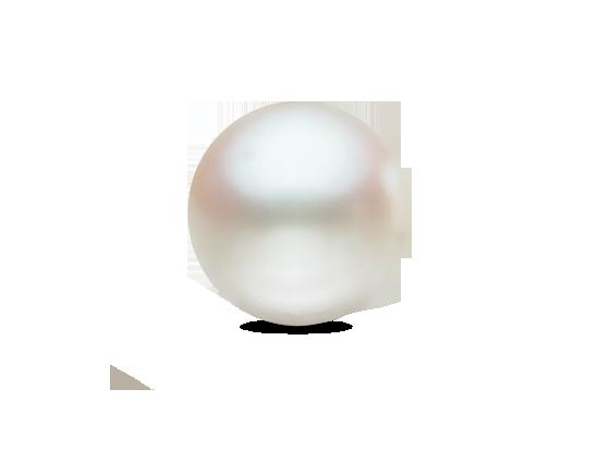 Südseeperle