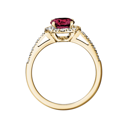 Prague Rhodolite red in Yellow Gold